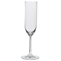 Wine Collection - Champagne Glass (Set of 2)
