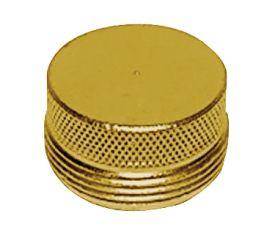 Enlarge Brass Faucet Plug