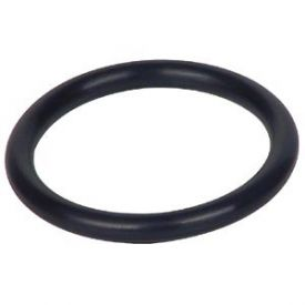 Enlarge O-Ring Gasket